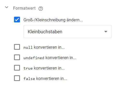 Google Tag Manager Formatwert